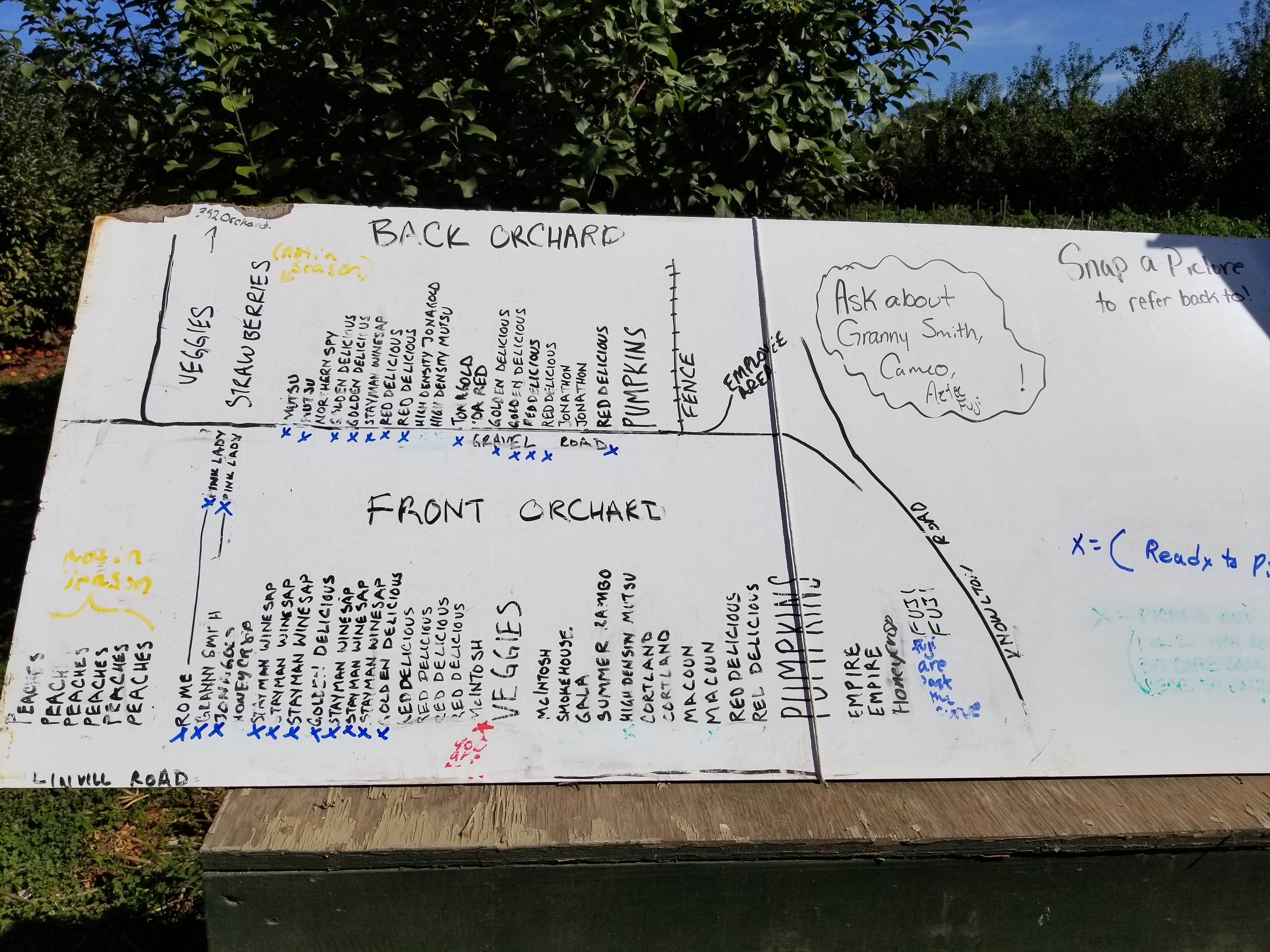 Linvilla Orchard Map