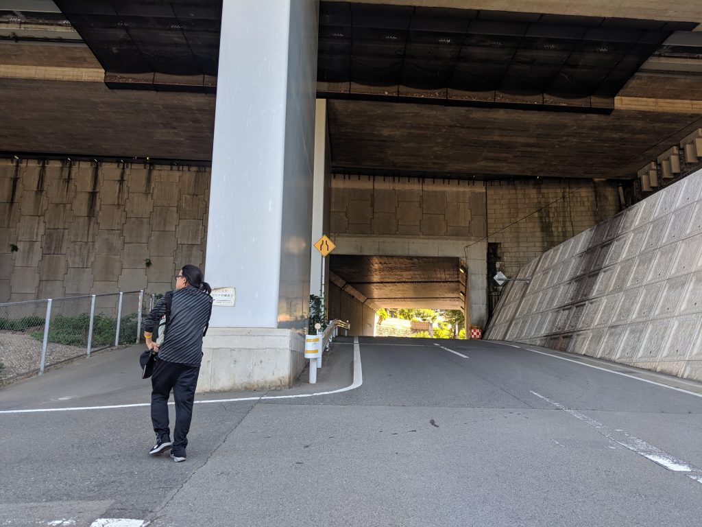 Image of the overpass you'll need to walk under as you walk to the trailhead