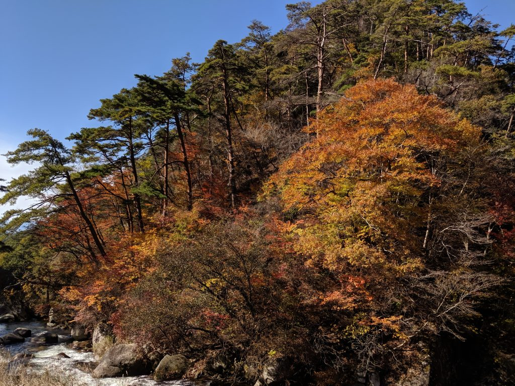 More autumn foliage at Shosenkyo Gorge